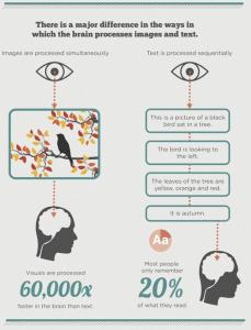Infographic Graphic Design Perth